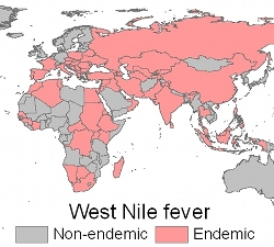 West Nile map.