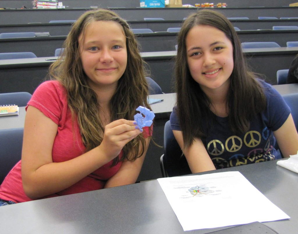 Adventures in STEM campers show off their plant cell organelle printed using the NIMBioS 3D printer.