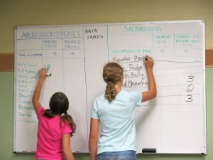 Tremont Girls in Science Campers tabulate their data on a dry erase board.