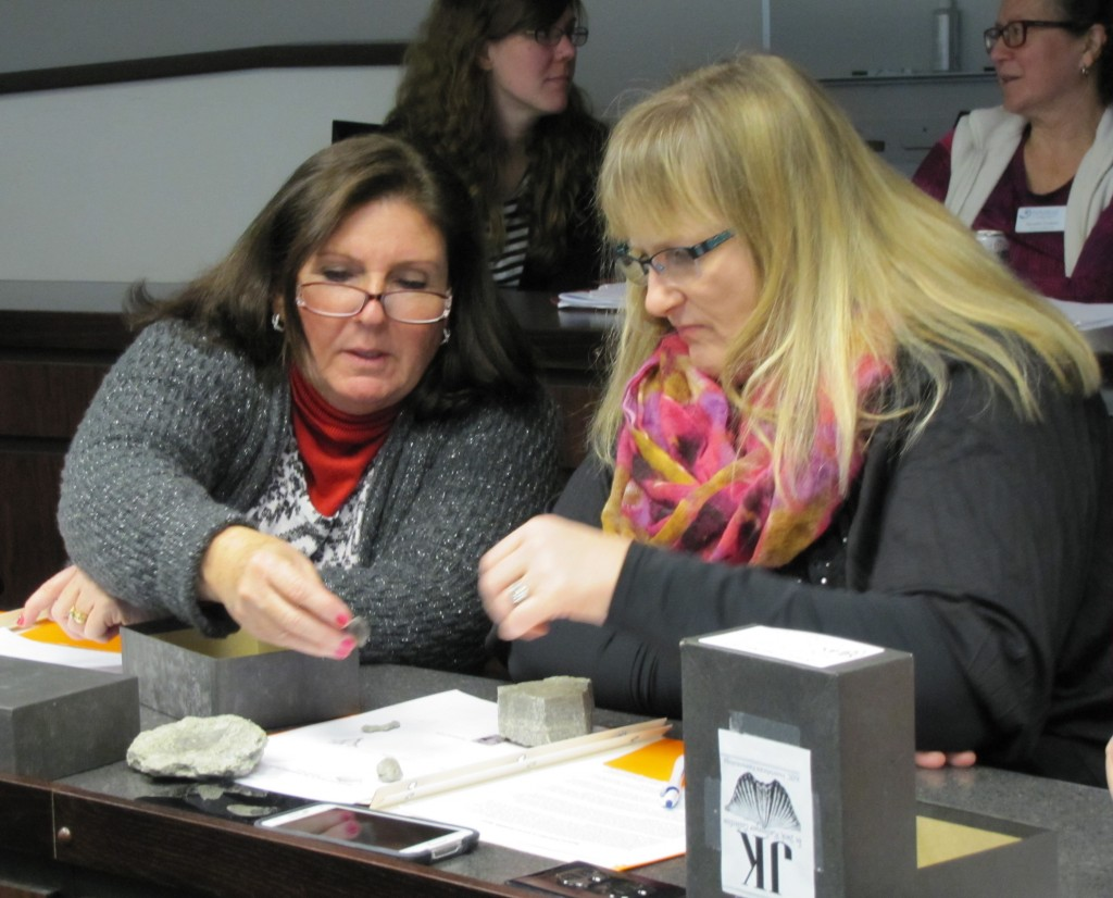 Tennessee teachers inspect and categorize fossils at the Darwin Day Teacher Workshop