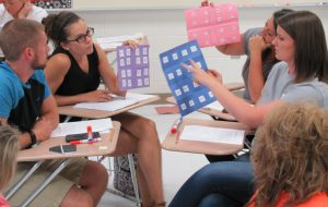 In this lesson, teachers designing animal shelter cage arrangements.